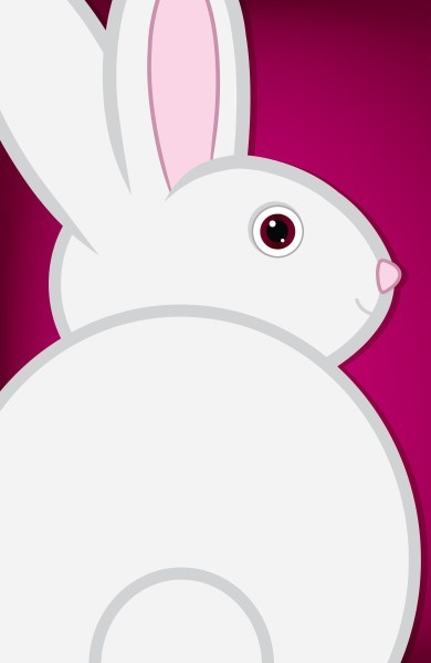 """What can a """"Bunny"""" Teach You About Detoxing?"""