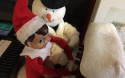 Top 3 Reasons Why Having an Elf is Healthy!